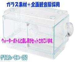 [GEX]境界線のないオールクリアハムスター飼育ケース・ハビんぐグラスハーモニー450プラス