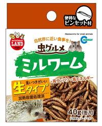 [マルカン]自然界に近い食事を!虫グルメ・ミルワーム(缶入り・生タイプ)40g(缶入)