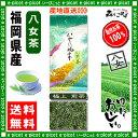 【送料無料】 極上煎茶 ( 100g ) 福岡県 ≪ 八女茶 ≫ 緑茶