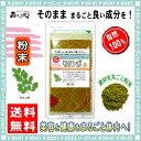 【送料無料】 モリンガ茶 (粉末)パウダー [100g] 森...