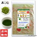【送料無料】 国産 セロリ粉末 (50g 内容量変更)[やさいパウダー100%] 野菜ジュース...
