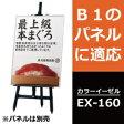 イーゼル アルミ製 カラーイーゼル:EX−160 受注生産品(変更・返品交換不可) 【F030】【メーカー直送3】【代引不可】