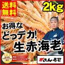 ギフト【送料無料】どっデカ!生赤えび2kg〈天然有頭〉焼きで...