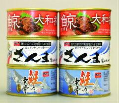 【送料無料直送】木の屋石巻水産缶詰6缶セット