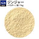 エスビー食品 セレクト ジンジャーパウダー/袋1kg【sel