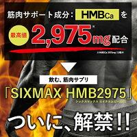 筋肉増量サプリメントSIXMAXHMB2975送料無料メール便