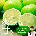 Shouhin01