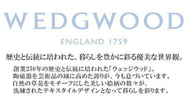 東京西川ウォッシャブル羽毛肌掛けふとんウェッジウッドシングルAA07152022日本製