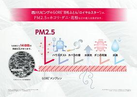 西川リビングゴアテックス羽毛ふとんポーランド産マザーグース93%フェザー7%シングル日本製B721