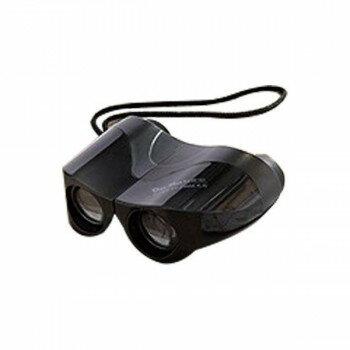 カメラ・ビデオカメラ・光学機器, 双眼鏡  8 STV-B08FBG 198223-015