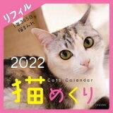 シーオーツー 猫めくり 2022年 カレンダー リフィル 日めくり CK-C22-02 [キャンセル・変更・返品不可]