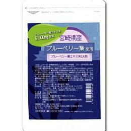 【ブルーベリー葉エキス末 EX粒】1袋にブルベリー葉エキス末6000mg含有。【楽ギフ_包装】fs04gm、【RCP】