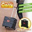 折りたたみ式コンテナキャリー A-02 <カラー箱> [キャンセル・変...
