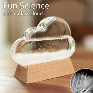 Fun Science ストームグラス クラウド