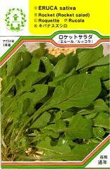 【メール便可】ハーブ・西洋野菜の種 「ロケットサラダ(ルッコラ/エルーカ)」
