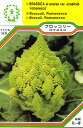 【メール便可】●西洋野菜の種 「ブロッコリー ロマネスコ」