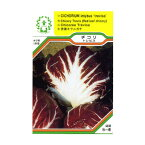 ハーブ・西洋野菜の種 「チコリ トレビス」
