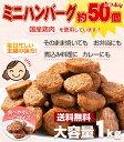 【送料無料】一口サイズのミニハンバーグ