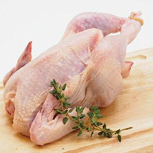 はかた地どり 小雛 丸 1羽 約400〜700g(1パックでの発送) (福岡県産) (pr)(09790)味に定評がある軍鶏と旨味成分を豊富に含むサザナミの血を引く地鶏です。