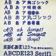 ネーム刺繍加工(社名)210円〜【同時購入の商品のみ対応可】【】