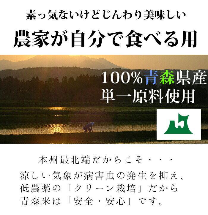 米 10kg  玄米食 調整済 【30年産 農家の食べているおいしい玄米10kg】オリジナル 10キロ