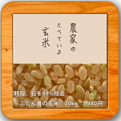 ■玄米10kg×2袋農家の食べているおいしいお米玄米20kg