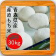 産直もち米(白米)30kg【徳用】【送料無料】