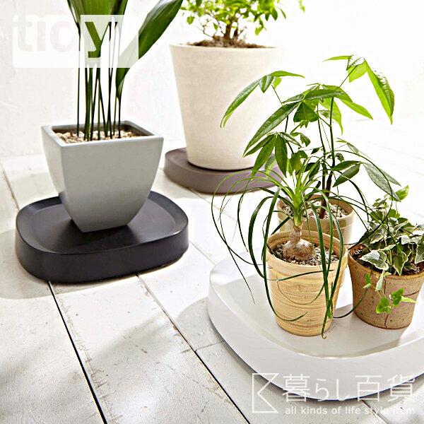 観葉植物トレー