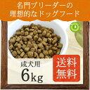 ネイティブドッグ プレミアムチキン 成犬用 6kg(3kg×...