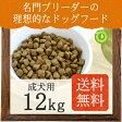 Native Dog プレミアムチキン 成犬用12kg(3kg×4)【送料無料】