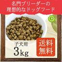 ネイティブドッグ プレミアムチキン 子犬用4kg 【送料無料】※沖縄は送料別