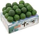 【わかめのおまけ付き】徳島特産 香り豊かで新鮮なすだち1kg箱 2Lサイズ【楽ギフ_包装】【楽ギ...
