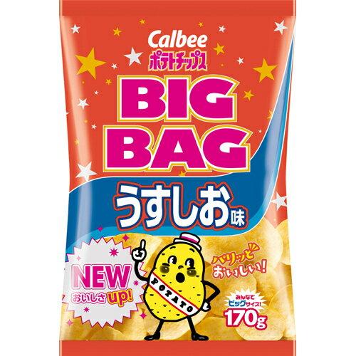フード お菓子 スナック菓子 【ケース販売】カルビー ポテトチップス ビッグバッグ うすしお味 170g×12袋
