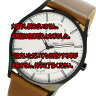 レビューで次回2000円オフ 直送 スカーゲン SKAGEN ホルスト HOLST クオーツ メンズ 腕時計 SKW6317 ホワイトシルバー 【腕時計 海外インポート品】