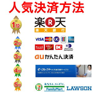 決済直送日本製職人の手作りNAR08Arenomaレノマ木棒手開き長傘【服飾雑貨傘】
