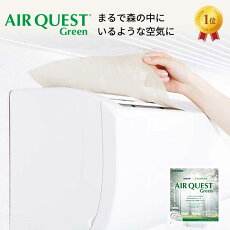 【未発売】エアークエスト38AQ1-01-0238cm×80cm2枚入り家庭用エアコンフィルター