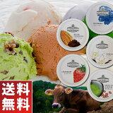木次乳業スーパープレミアムアイスクリームVANAGA5個セット