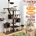 ◆送料無料◆ キャットタワー 高さ230〜254cm 突っ張り 猫タワー 爪研ぎ 麻紐 ねこ 猫 ネコ キャットタワ...
