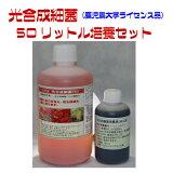 光合成細菌 50リットル 培養セット
