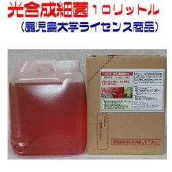 super光合成細菌PR010000(光合成細菌・フルボ酸配合)