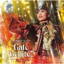 望海風斗/宝塚歌劇 雪組公演 ショー・パッショナブル Gato Bonito!!〜ガート・ボニート、美しい猫のような男〜