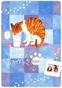 やっぱり猫が好き 7枚BOX / 室井滋/小林聡美/もたいまさこ
