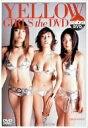 【送料無料】小池栄子/佐藤江梨子/MEGUMI/sabra DVD YELLOW GIRLS THE DVD 小池栄子 ...