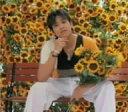 ひまわりのRhapsody / リュ・シウォン