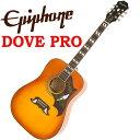 エピフォン Epiphone Dove PRO アコギ エレアコ アコースティックギター 【送料無料】