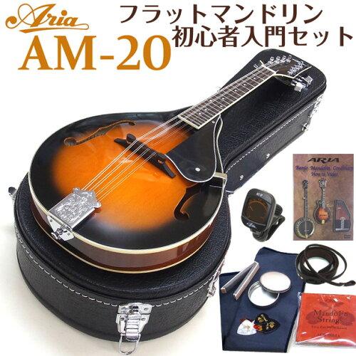 マンドリン ARIA アリア AM-20 初心者 10点セット フラットマンドリンで始める初心者セット!【送...