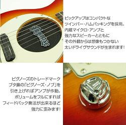 PignoseピグノーズPGG-200CSアンプ内蔵ミニギターセット【送料無料】