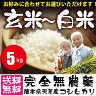 """【送料無料】平成29年度新米販売スタート!""""分づき米も選べる""""熊本県天草産『完全無農薬米""""5kg""""』健康志向の方・玄米食に興味がある方におすすめ!安心安全な玄米・分づき米・白米から選べます!/自然栽培米/熊本産コシヒカリブランド☆ましおのお米5kg"""