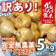 【数量限定!】訳あり(規格外品)『完全無農薬!こだわり農法のサラダたまねぎ:5kg』熊本県…