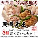お返し 敬老 ギフト 高級ブランド地鶏「天草大王」豪華詰め合わせ8種セット送料無料(モモ肉・ムネ肉・